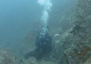 diver1407162